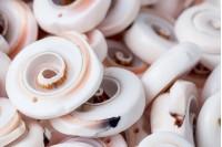 Комади за декорацију природних нијанси-пакирање 24vкомада